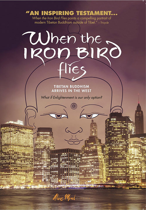 When the Iron Bird Flies DVD cover